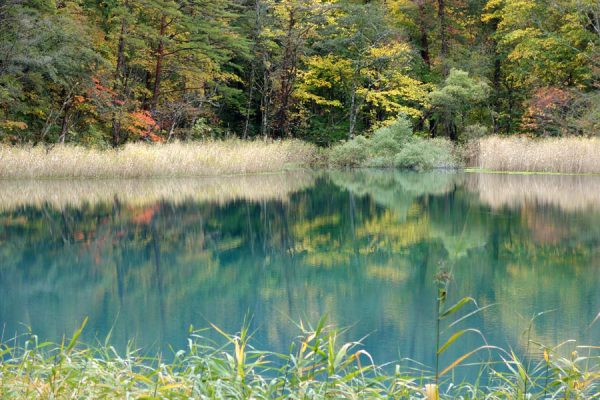 るり沼の紅葉