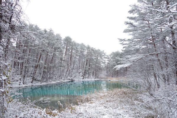 初冬の五色沼