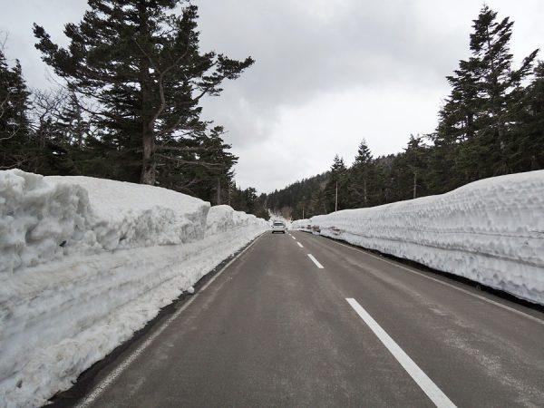 磐梯吾妻スカイラインの雪の回廊