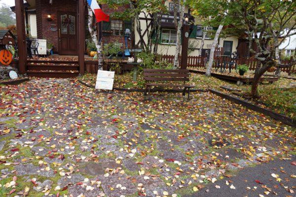 秋が深まってきました