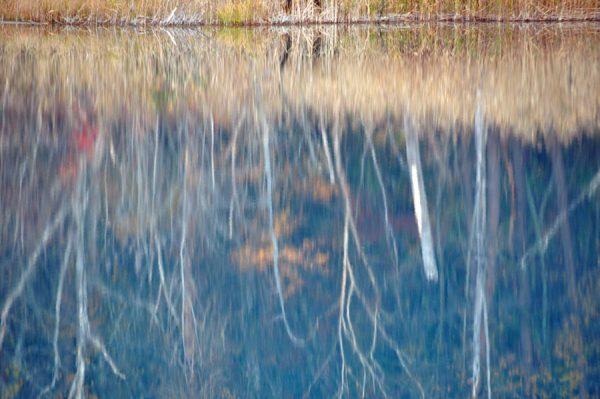 沼面に映る紅葉