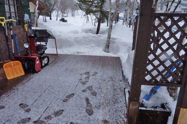 裏磐梯の雪