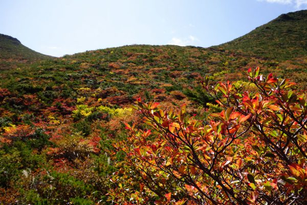 くろがね小屋の紅葉