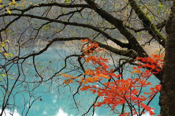 晩秋の五色沼