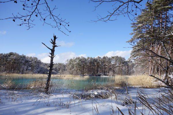 冬の五色沼散歩