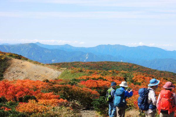 栗駒山頂の紅葉