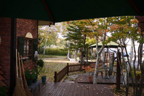 庭の紅葉、落葉