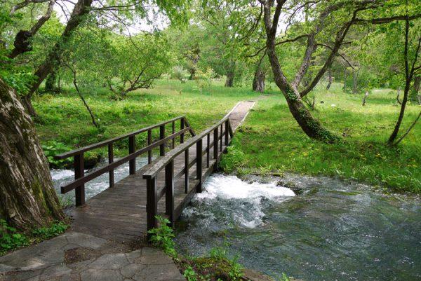磐鏡園遊歩道