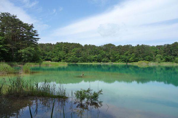 "<span class=""title"">五色沼・初夏の候/ハートの鯉にも会えました。</span>"
