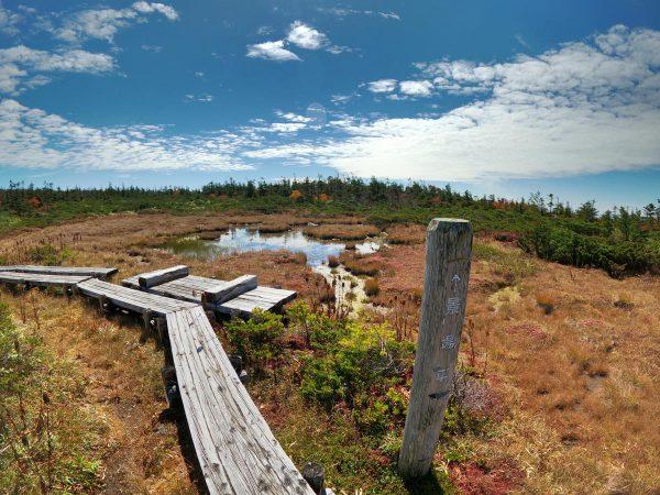 景場平湿原